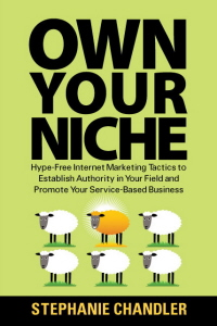 Own Your Niche: Internet marketing and social media book by Stephanie Chandler